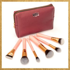 Fuschia Profile 6 Piece Face Brush Set