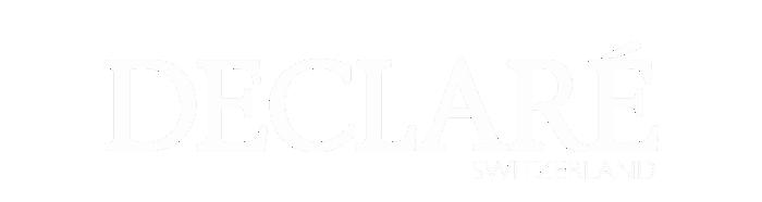 Declare_Logo white